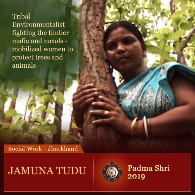 Fighting the timber mafia